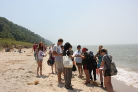 Studying primary succession at Saugatuck State Dune Park, MI
